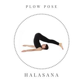 Plow pose – Halasana