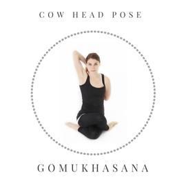 Cow head pose - Gomukhasana