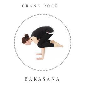 Crane pose - Bakasana
